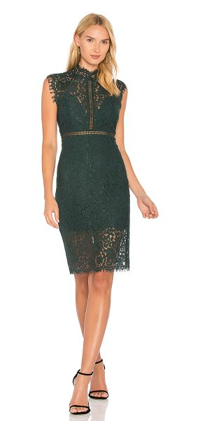 Bardot lace panel dresses