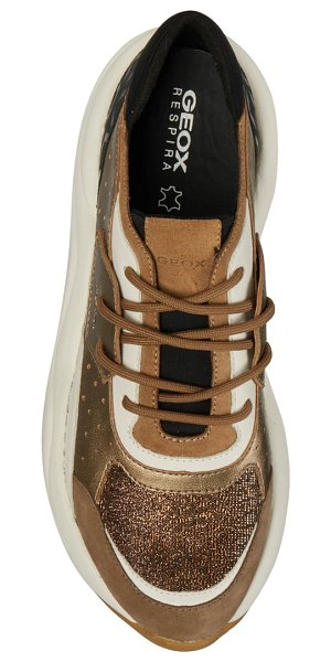 Geox topazio sneaker in dark beige/ tobacco leather