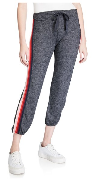 Sundry Basic Cropped Sweatpants with Striped Trim in charcoal