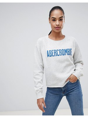 Abercrombie & Fitch cropped logo sweatshirt
