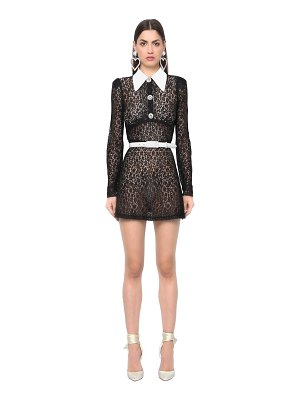 Alessandra Rich Sheer lace dress w/ mikado satin collar