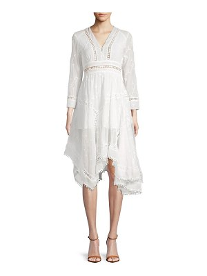 Allison New York Embroidered Asymmetrical Knee-Length Dress