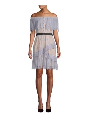 Allison New York Ruffled Lace Dress