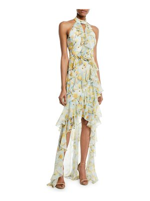Badgley Mischka Collection Floral High-Low Ruffle Halter Gown