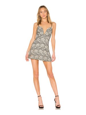 by the way. Tinley Lace Mini Dress
