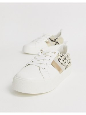Call it Spring by aldo augustiski sneakers in snake-multi