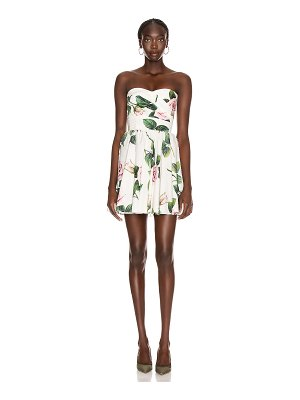 Dolce & Gabbana strapless floral mini dress
