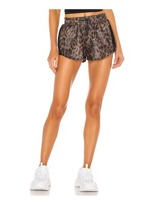 KORAL ACTIVEWEAR power shiny netz shorts