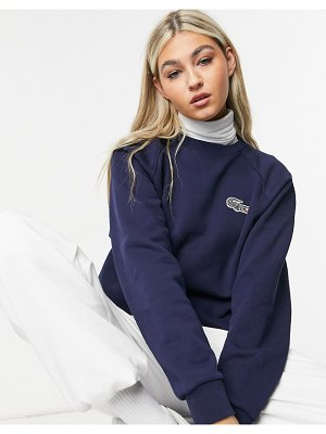 LACOSTE x national geographic printed croc logo sweatshirt in navy