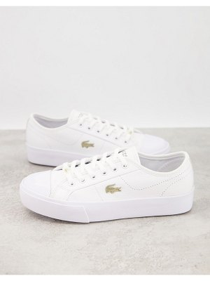 LACOSTE ziane grand flatform sneakers in white with gold badge