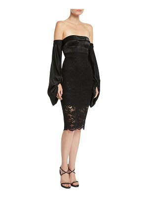 Misha Collection Constance Strapless Long-Sleeve Lace Dress