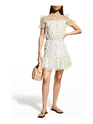 ML Monique Lhuillier Bridesmaids Floral-Embroidered Tulle Overlay Dress