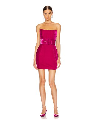 Rasario velvet corset mini dress