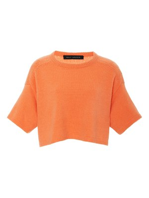 Sally Lapointe airy cashmere silk cropped boxy tee size: m/l