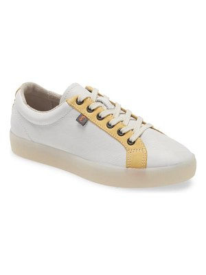SOFTINOS BY FLY LONDON suri low top sneaker