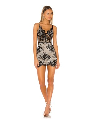 superdown charlize lace mini dress